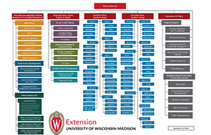 Division of Extension org chart